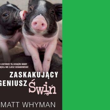 ZASKAKUJĄCY GENIUSZ ŚWIŃ Matt Whyman